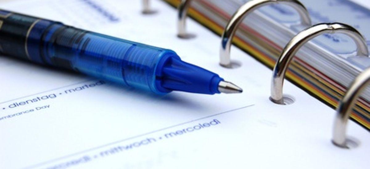 Terminkalender Ringbuch mit Kugelschreiber